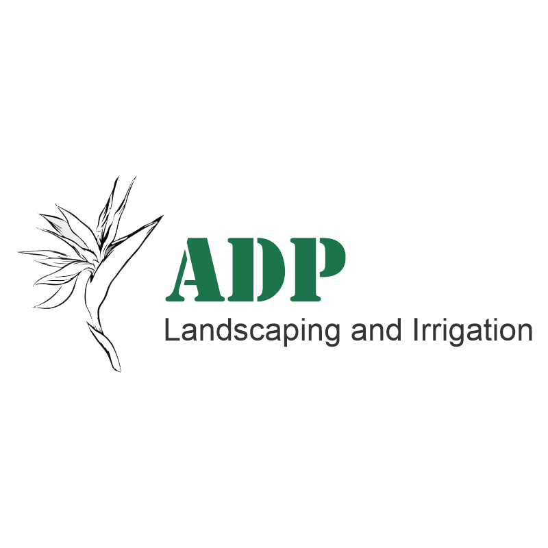 ADP Logo - transparent